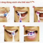 Hướng dẫn cách đánh răng chuẩn dành cho răng sứ