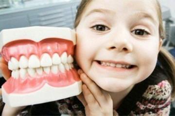 Tìm hiểu chức năng – tầm quan trọng của hệ răng sữa